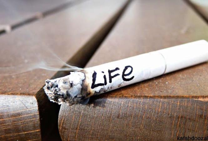 Интересные и шокирующие факты о курении