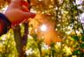 День осеннего равноденствия / Открытый источник. © Хезер Брук